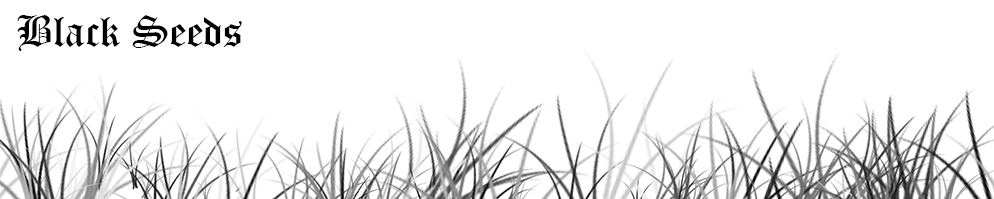Blackseedsbanner