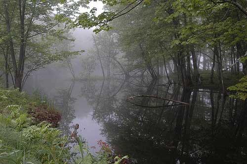 ky-river-02__1_.jpg
