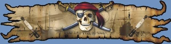 Corsairs banner
