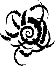 blackspiral.jpg