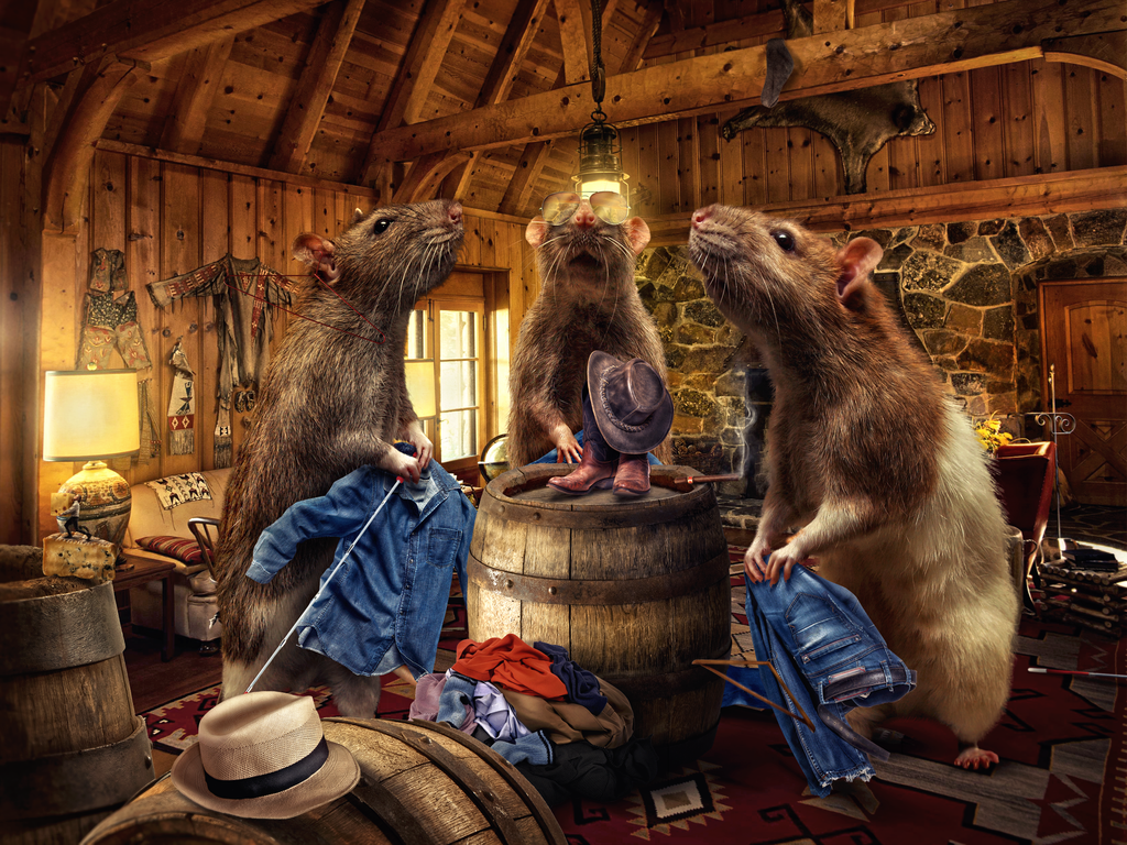 three_blind_rats_by_flewdesigns-d78lokn.png