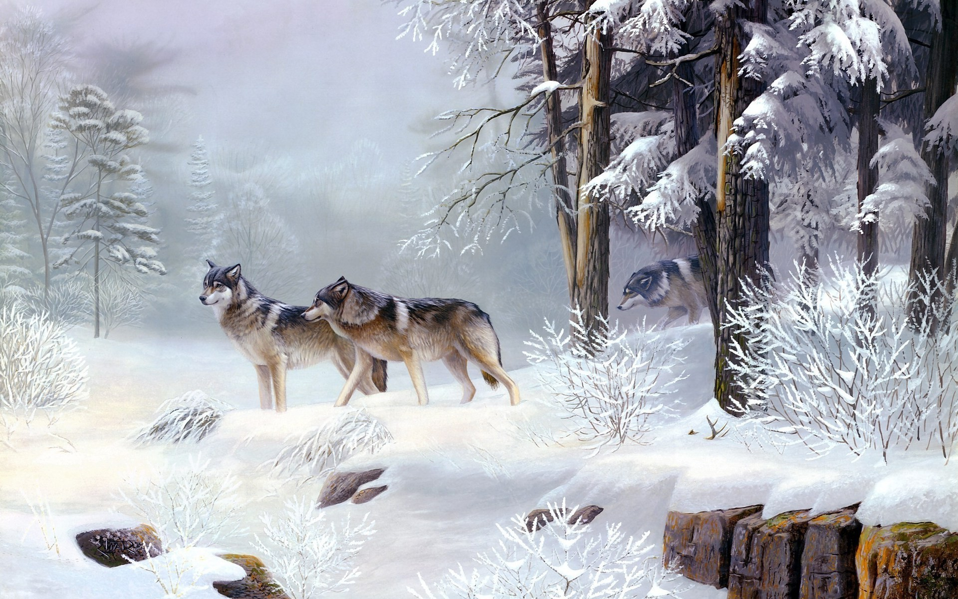 Wolf_Tracks.jpg