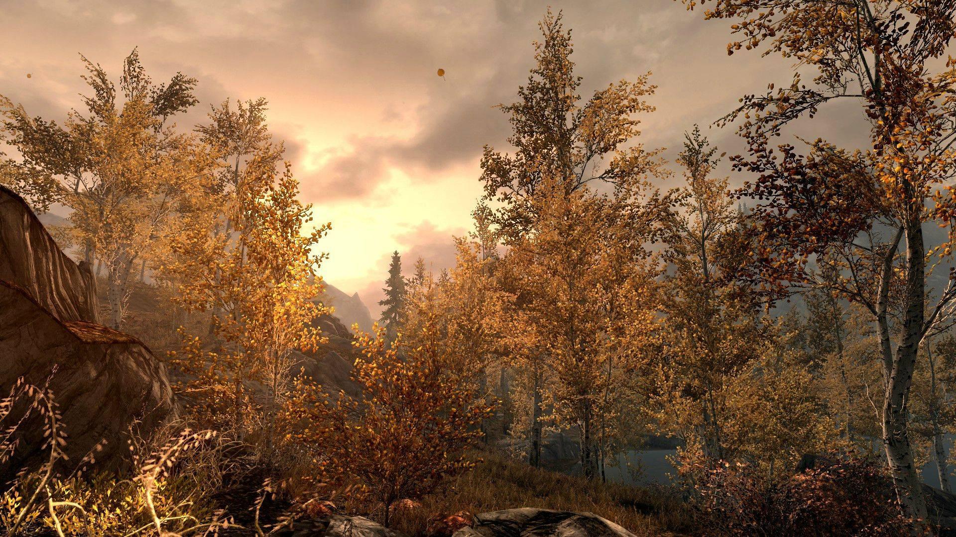 Lands_West_of_Thornkeep_-_Smoke_Woods.jpg