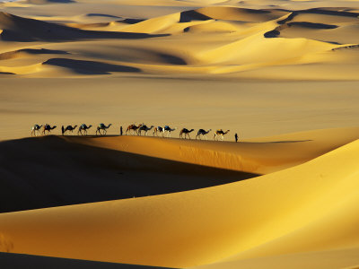 haglund-johnny-tuareg-nomads-with-camels-in-sand-dunes-of-sahara-desert-arakou.jpg