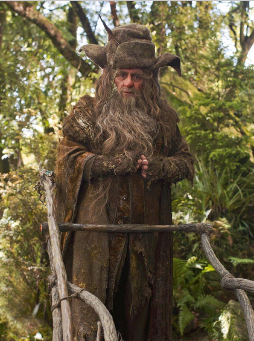 Radagast_the_Brown.PNG