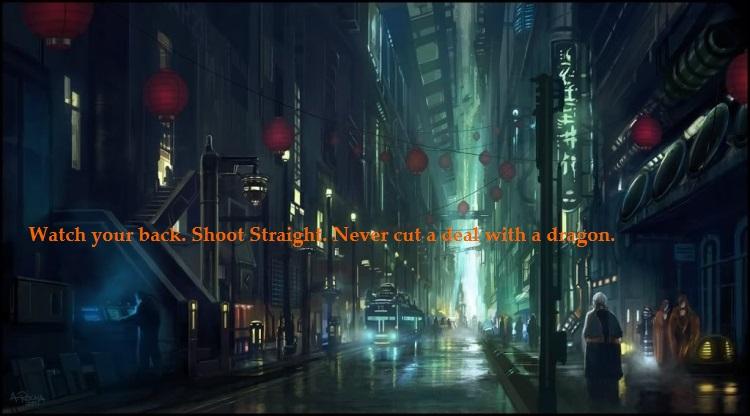 Shadowrun banner2