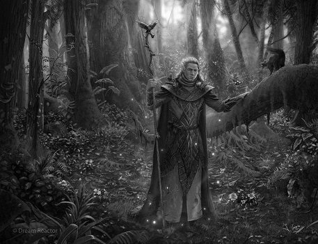 elf_druid_by_1oshuart-d64ocll.jpg