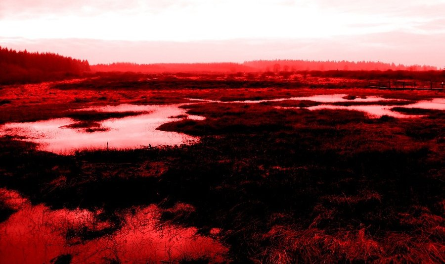Blood swamp by faithless12 d4n0sq5