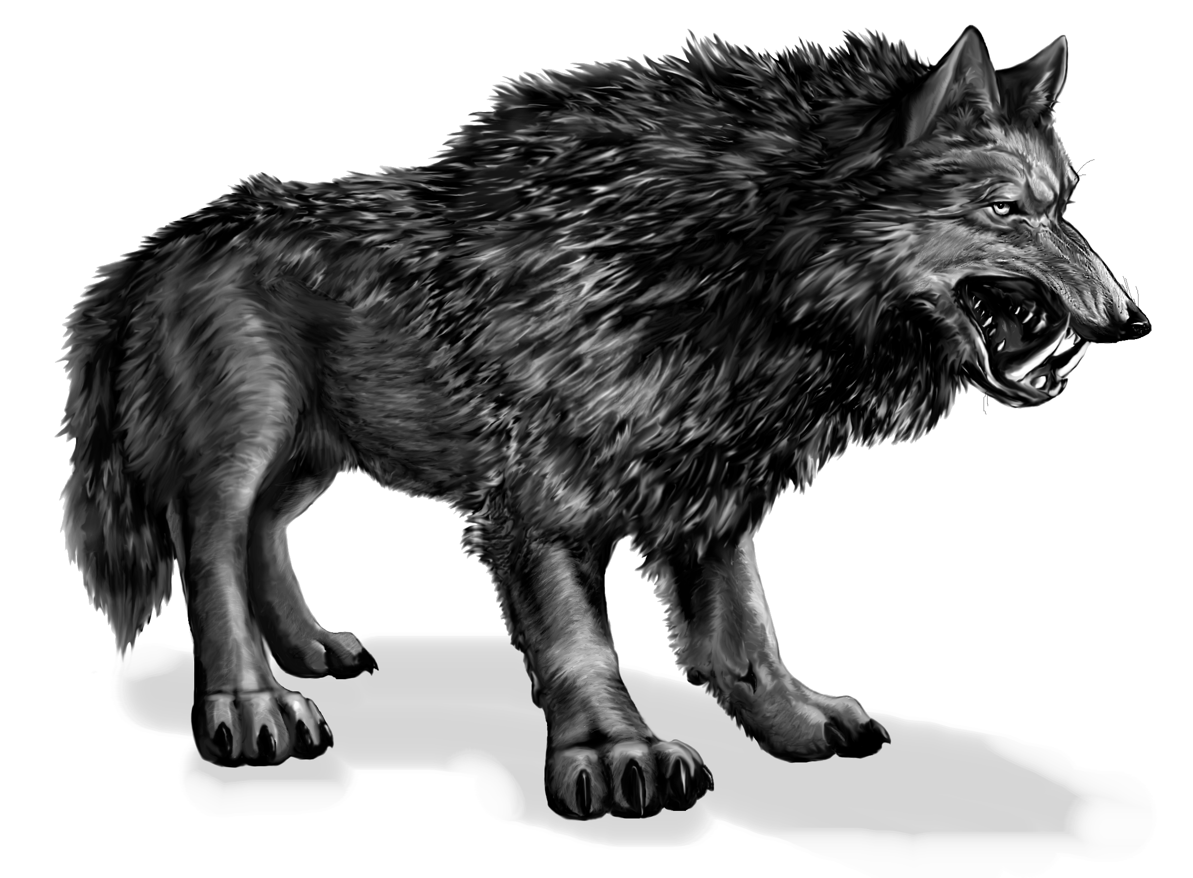 dire_wolf_by_feralkyn-d3cqc09.png