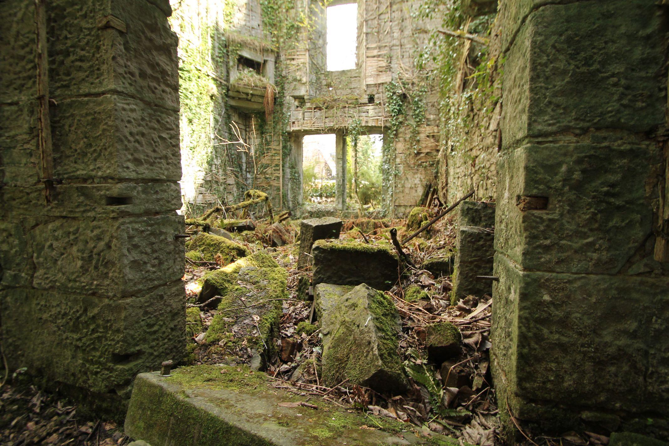 Ruins_of_ThunderTree_2.jpg