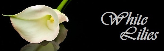 Beautiful calla flower  6