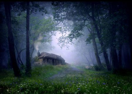 cottage-in-the-woods.jpg
