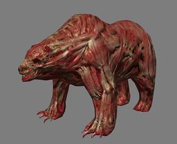 Bear-Bane