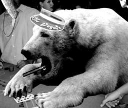 Lt.Cmdr. Brun Bearhammer