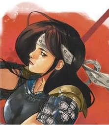 Hida Miyako