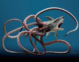 The Sharktopus