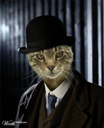 Inspector Tasris