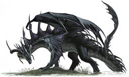 The Black Dragon - Asafagraxis