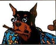 Hyperdog
