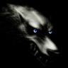 Dargon Whisperwolf
