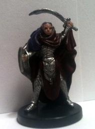 Flax, half-elf son of Ellesandra