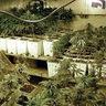 Vivek's Grow Room