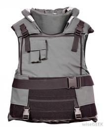 APEX Standard Armor