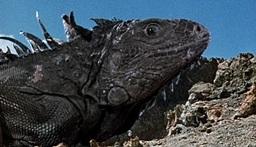 Vehicle/Beast: Iguanodon Pack Lizard