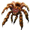 Vagabond Spiders