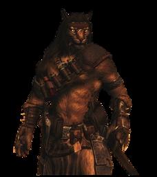 Leo the Leonis Warrior Mage