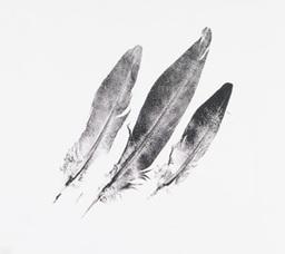 Las 3 plumas divinas