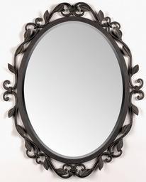 Mirror-Shield