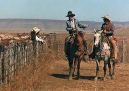 Lazy S Cowboys