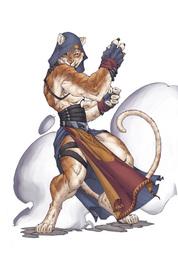 Hachi the Tiger