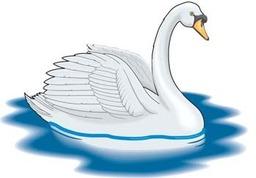 Shvens Swan