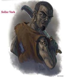 Soler Vark