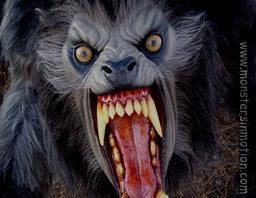 Terrlen Darkseeker