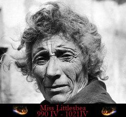 Mrs. Littlesbea
