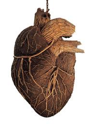 Briar Heart