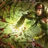 Widow Cedar