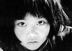 Shay-Lin