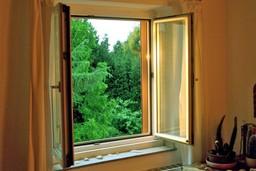 Window of Escape