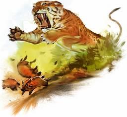 Tiger (species)