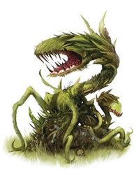 Carnivorous Plant (species)