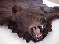 Bear Skin Cloak
