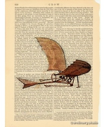 Timberwings' Flying Machine