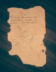 Ancient scrap of paper
