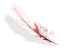 Feather of Faith