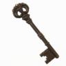 Surgically retrieved Key