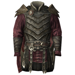 Fancy Leather Armor